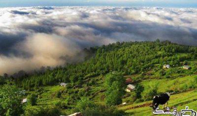 Photo of مازیچال کجاست | همه چیز در مورد مازیچال – جنگل – روستا – تصاویر
