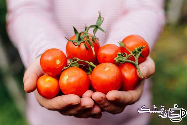 Is It Safe To Eat Tomatoes During Pregnancy - 15 غذای مفید برای حفظ سلامت قلب
