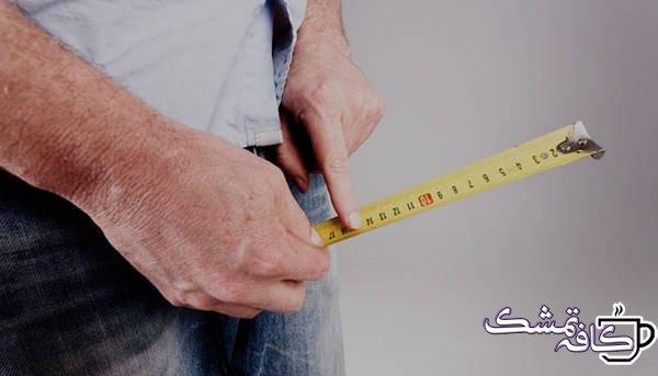 اندازه طبیعی آلت تناسلی مردان | همه چیز در مورد سایز آلت تناسلی مردان