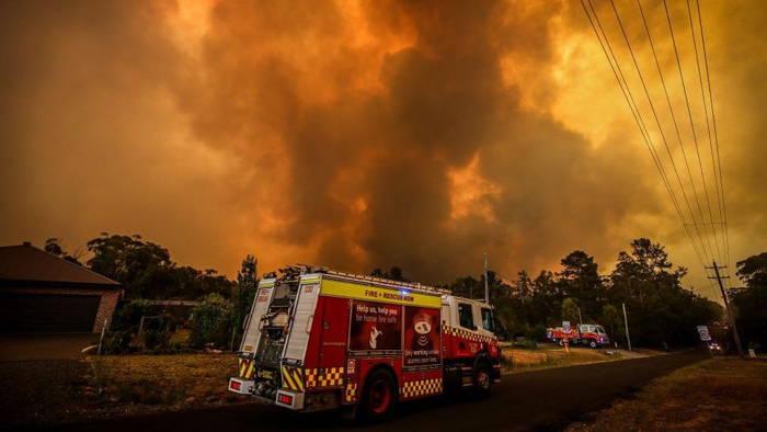 Photo of فاجعه آتش سوزی استرالیا | 500 میلیون حیوان جان باخته اند