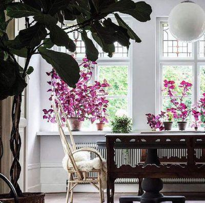 Photo of چیدمان گلدان در منزل 99 – 2020 ، دکوراسیون منزل با گل