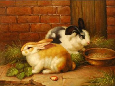Photo of نقاشی خرگوش ، نقاشی ساده خرگوش ، نقاشی از صورت خرگوش ناز و خوشگل
